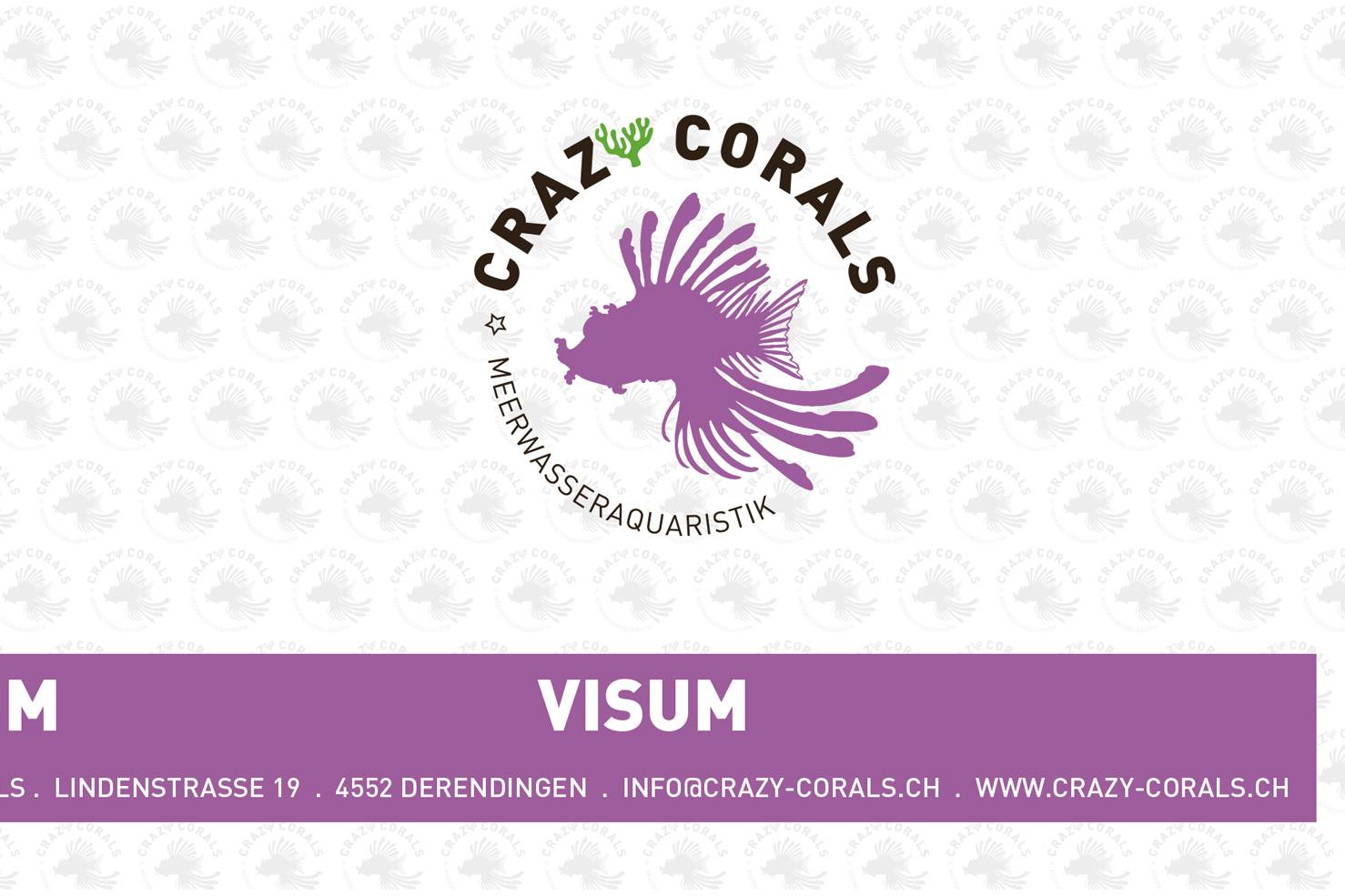 Bild 3 vom Crazy Corals Grafikdesign